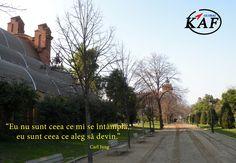 """""""Eu nu sunt ceea ce mi se întâmplă, eu sunt ceea ce aleg să devin."""" – Carl Jung http://www.globalkaf.ro #cursuri, #consultanta"""