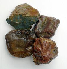 Rock Hounding washington | Carnelian/Agate, Red and Green Jasper, Salmon Creek
