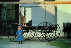 UNITED STATES (Pennsylvania) - Life in Amish Country (5)