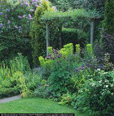 Perfect Pacific Northwest shade garden.