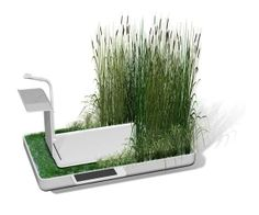 Ecosystem Showers - Jun Yasumoto's Phyto-Purification Bathroom Filters & Recycles Water (GALLERY)    conceptual design