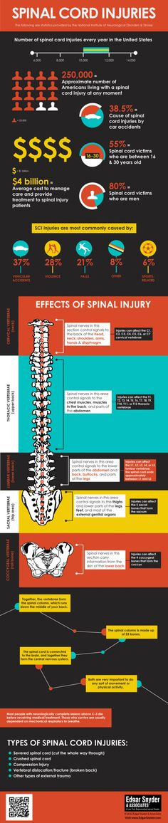 Spinal Cord Injuries and Facts Infographic