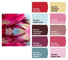 Paint colors from Chip It! by Sherwin-Williams Colour Schemes, Color Trends, Color Combos, Red Paint, Paint Colors, Website Color Themes, Hex Color Codes, Color By Numbers, Color Psychology