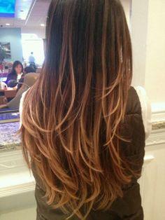 Ombre Hair color (rich dark brown, milk chocolate brown & honey blonde)