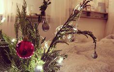 Wer nicht gleich einen Tannenbaum im Zimmer haben möchte oder schlicht und einfach keinen Platz dafür hat, aber trotzdem gerne ein paar grüne Zweige dekorieren möchte, der kann diese beispielsweise in eine Vase oder ein hohes Glas geben und mit Kugeln schmücken. #bed  #liebe #DIY #Advent #Calendar #Decoration #Candle fir cone #Basteln #Dekoration #Weihnachten #mydays #twigs #decoration Christmas ball ornament