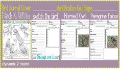 Free Bird Journal. Includes cover page for binder, identification logs, coloring pages, etc.