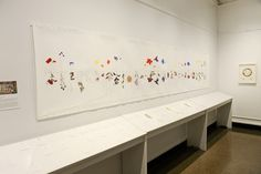 Extracting a Rainbow of Color from Invasive Plants, NYC exhibit review