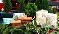 Rewards And Negatives Regarding Self Property And Backyard Garden Installment And Upkeep - http://www.currentdecorart.com/home-decoration/rewards-and-negatives-regarding-self-property-and-backyard-garden-installment-and-upkeep/