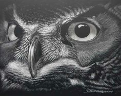animals in scratch board | The Scratch Board | Scratchboard art and acrylic paintings by Tania ...