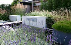 Prijswinnende moderne eco chic garden met moderne elementen en tuinverlichtingTuinontwerp en tuindesign STIJLTUINEN | Exclusieve, luxe en moderne tuinen