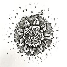 www.lucas2d.com #sketch #sketchbook #draw #drawing #ink #illustration #mandala #doodle #flower #flowers #flor #flores #leaf #leaves #nature #natureza #folha #folhas #natural #artwork #beautiful #wood #plant #plants #love #fun #graphic #like #desenho #art