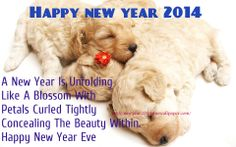 happy new year's dog images | Happy New Year 2014 Greeting Cards, Images, Text: