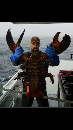 Tagged with , Awesome; Giant lobster caught in Nova Scotia Usa Fishing, Deep Sea Fishing, Fishing Boats, Giant Lobster, Crab And Lobster, Big Crab, Lobster Fishing, Big Animals, Giant Animals
