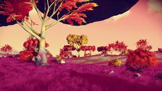 Oasis I. Portal coordinates can be found on our Twitter page @ StellarTech_NMS