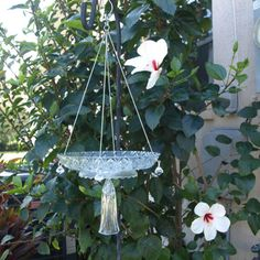 Repurposed Bird Feeder...love this for outside kitchen window!
