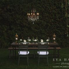 Thinking of going green? 🍃 We're the only ones in the city with sage Chiavari chairs! Photo by Design by Back To Nature, Woodsy Wedding, Chiavari Chairs, Showcase Design, Go Green, Ottawa, Event Decor, Tablescapes, Sage