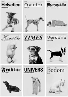 Dogs as Fonts