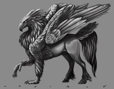 hippogryph - Google Search