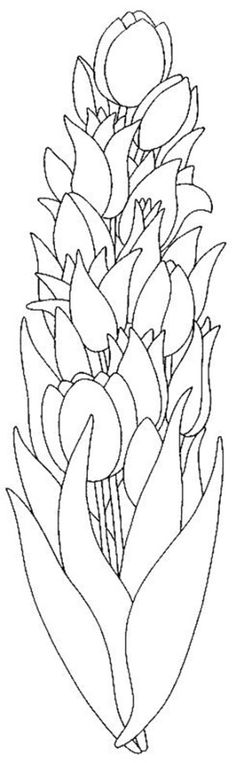 Tulips coloring page 22