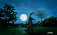 """Sleepwalker Obviously the moon is huge in this image. There was a moon when I took the picture at exactly that position but of course it was a lot smaller, even though this night we had that """"super-moon"""" everyone was talking about. This capture was made in front of the Löwentor Museum in Stuttgart, Germany and I guess this little guy went for a walk in the middle of the night. Please view large, feel free to share, comment, and to hit the like button of course."""