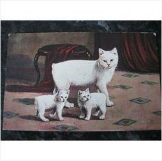 1930's Manx cat and kittens postcard Valentine's message & stamp on eBid United Kingdom