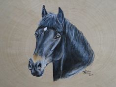 Acryl aug Holz Horses, Animals, Drawing S, Animais, Animales, Animaux, Animal, Horse, Dieren