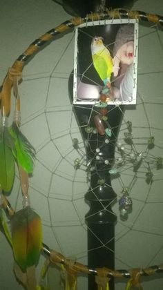 The Chartreuse Parrot Large Personalized gift dream catcher with name