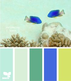 Color scheme for kitchen? It incorporates the colors of both my jadeite and colbalt glass, as well as the yellow from the countertop and flooring that we'll be living with until we can afford to renovate. This could work...