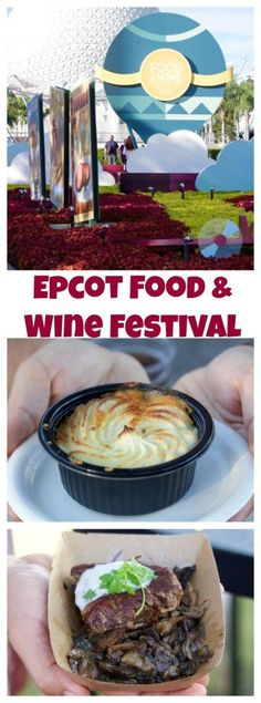 We just got back from the Epcot Food & Wine Festival in Walt Disney World! We ate so much delicious food and I'm going to share all of our favorite tastes with you today! You can still visit the festival through November 14th!