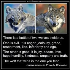 World of Proverbs - Famous Quotes: There is a battle of two wolves inside us . . . (continued) ~ Native American Proverb, Cherokee [19638]