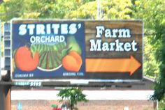 Strites' Orchard Farm Market and Bakery in Harrisburg Pennsylvania is open year-round with locally-grown fresh fruits, vegetables, bakery items, cheese, milk, meats and more!