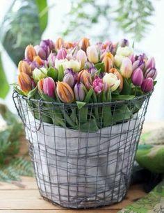 #Çiçekler