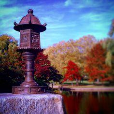 #Japaneselantern #BostonPublicGarden #lagoon #Fallfoliage #fall #foliage #autumncolors #Boston #Massachusetts #bostonma #tiltshift
