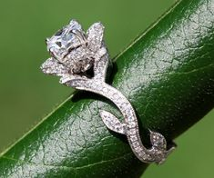 OH MY GOD I'VE FOUND IT This is now the only engagement ring I will accept For the low price of only $4500.00