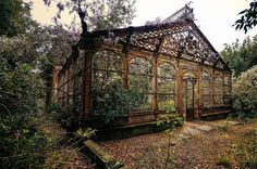 "Compendium of Abandoned Greenhouses ""The Steampunk Greenhouse"" dating back to the last quarter of the Century. Photograph by Nicola Berlotti""The Steampunk Greenhouse"" dating back to the last quarter of the Century. Photograph by Nicola Berlotti Abandoned Mansions, Abandoned Buildings, Abandoned Places, Victorian Greenhouses, Victorian Conservatory, Victorian Gardens, Jardin Decor, Dream Garden, Old Houses"