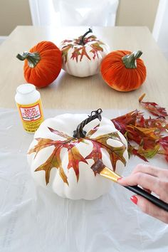 Use Mod Podge to decorate faux fall pumpkins with leaves. Easy no carve pumpkin decorating that is safe for the kids! Thanksgiving Crafts, Fall Crafts, Holiday Crafts, Diy Pumpkin, Pumpkin Carving, Pumpkin Painting, Fall Pumpkin Crafts, Acorn Crafts, Carving Pumpkins