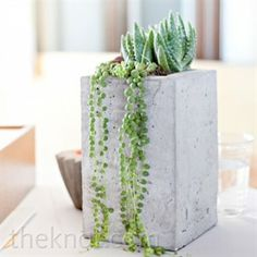 Eclectic Succulent Centrepieces. Simple, understated and chic.