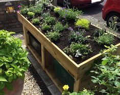 Bike Shed / Shelter with Green Roof Planter - for sedum, succulents - hand made in Bristol Garden Bike Storage, Roof Plants, Bike Shelter, Log Store, Bike Store, Pressure Treated Timber, Drainage Solutions, Growing Greens, Living Roofs