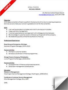 Graphic Designer Resume Sample  Resume Examples