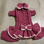 Dog Clothes - A Couple Of Steps Towards Finding Success Along With Your Dog Crochet Dog Clothes, Crochet Dog Sweater, Yorkie Clothes, Doll Clothes, Small Dog Clothes, Dog Clothes Patterns, Dog Items, Training Your Puppy, Dog Sweaters