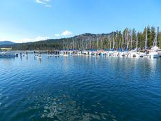 elk lake final race of the Gerry Lopez Summer series