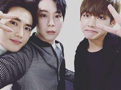 "Boy Groups Unite in Friendly ""Music Bank"" Backstage Selca Suho Himchan and Taehyung Baekhyun, Exo Bts, Bts And Exo, Bts Jungkook, K Pop, Moorim School, Jung Daehyun, Kpop Memes, Meme Center"