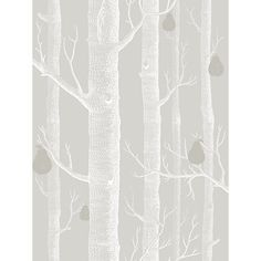 Cole & Sons Wood and Pear L x W Wallpaper Roll Color: Gray/White/Silver