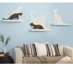 catshelf16.jpg 640×585 pixels