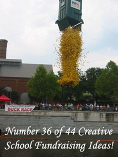 A Duck Race. One of