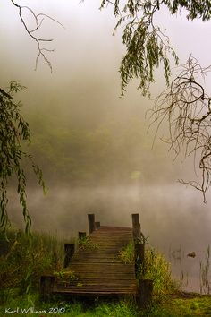 """A misty morning does not signify a cloudy day.""  Proverb"