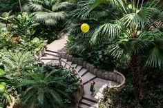 Jungle Gardens, Patio, Outdoor Decor, Plants, Home Decor, Decoration Home, Room Decor, Plant, Home Interior Design