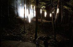 Show de luzes em parque do Canadá (Foto: Divulgação)