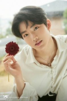 YG Treasure Box - Reactions/Scenarios/Imagines [Requests opened] - Junkyu - when he finds out you like him Bilal Hassani, Yg Trainee, Baby Koala, Flower Boys, Treasure Boxes, Flower Images, Boyfriend Material, Beautiful Boys, Boy Groups