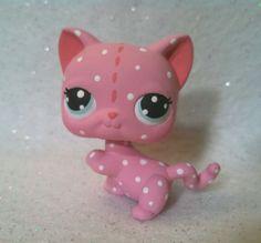 Custard Cat * OOAK  Hand Painted Custom Littlest Pet Shop Strawberry Shortcake